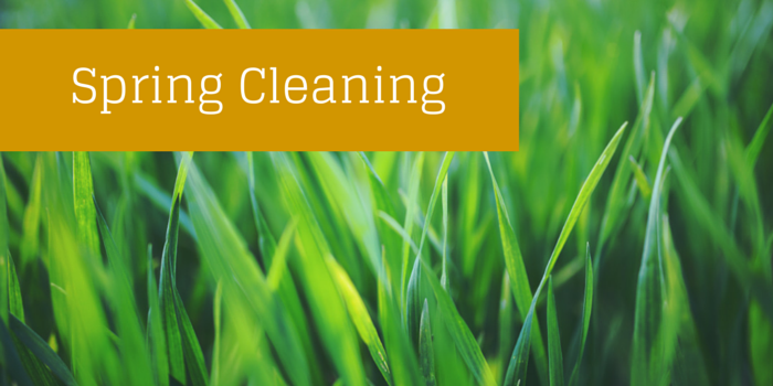 spring cleaning blog header image with grass