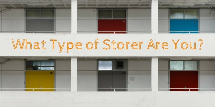 what type of storer are you blog header image