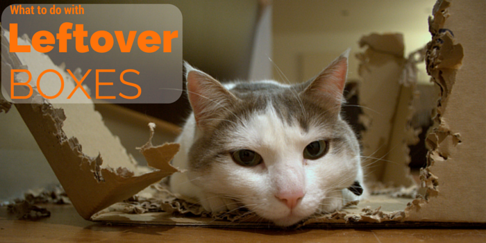 what to do with leftover boxes blog header image with cat in box